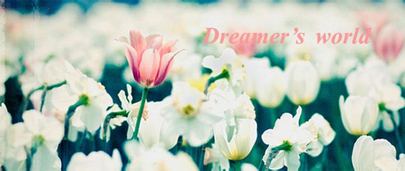 Dreamer's world