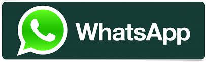 Whatsapp Admin InfoHyips