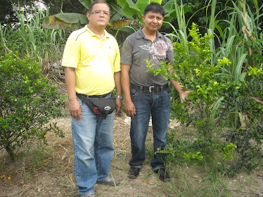 Waiz K Bio- Organics (M) Sdn Bhd
