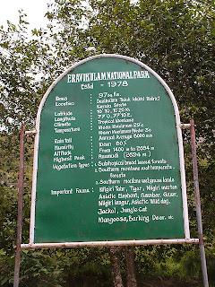 Eravikulam National Park Munnar