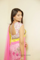 Actress_Nikitha_narayan_saree