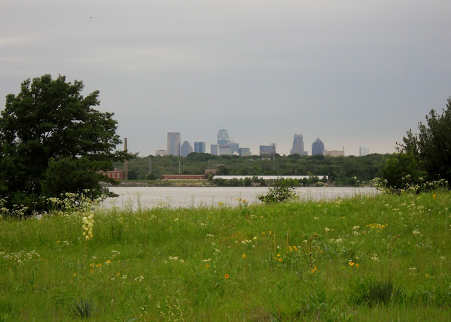 Downtown Dallas from Winfrey Point, White Rock Lake, TX
