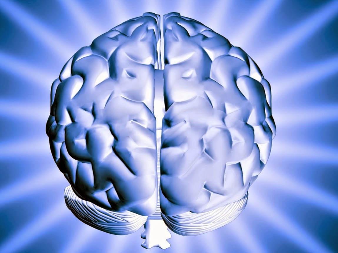 The Brain, Is Alzheimer's hereditary?