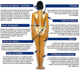 Centro de la columna vertebral la elecci n del colch n y la espalda - Colchones para dolor de espalda ...