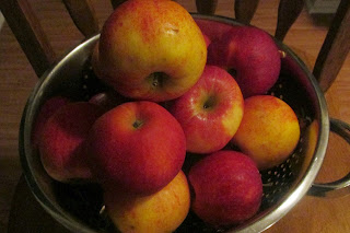 Bowl full of apples