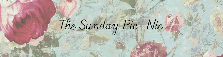 The Sunday PicNic