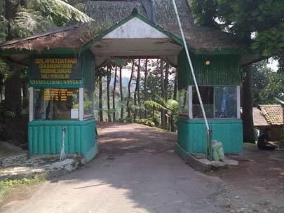 Wisata Alam Ke Curug Nangka Bogor