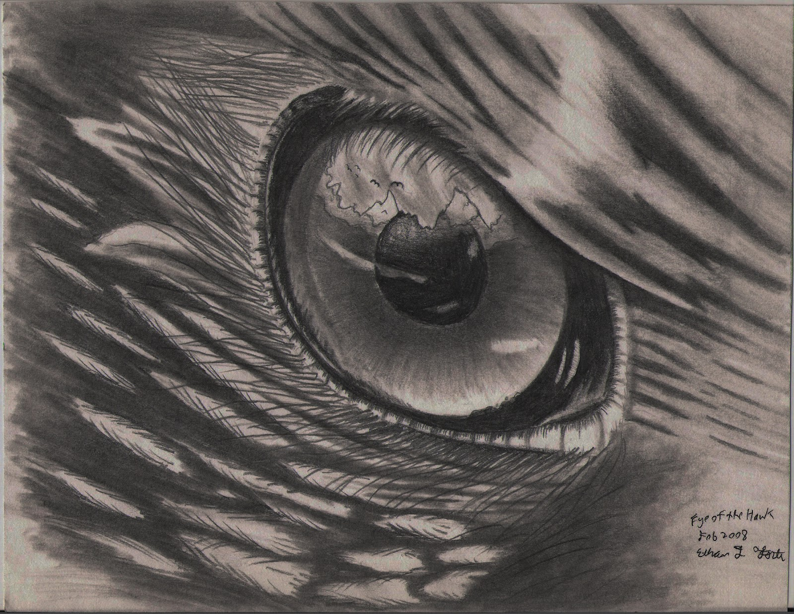 Hawk eye pencil drawing in h hb b3 and mech pencil