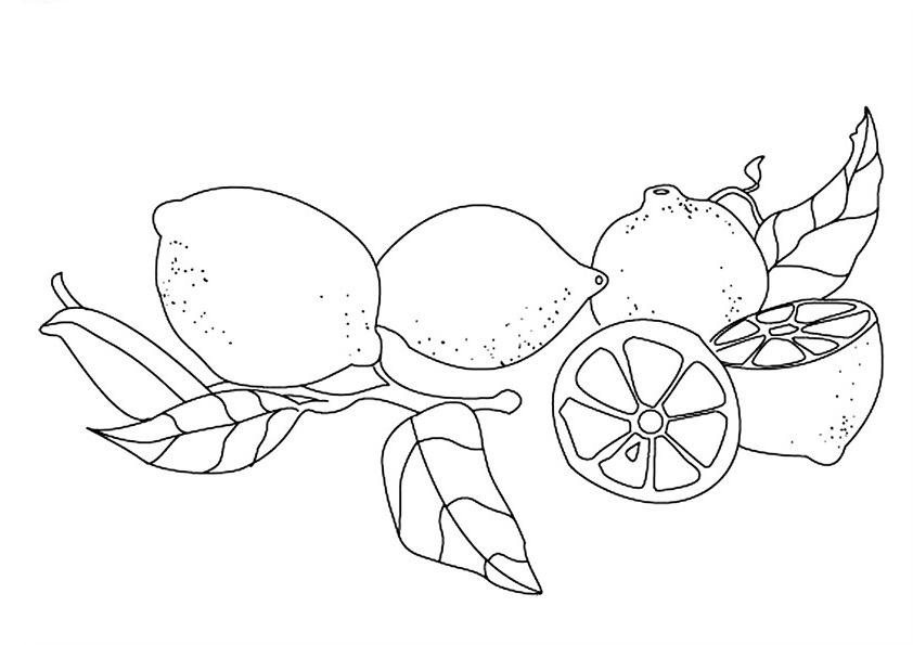 Dibujos para colorear de limones - Coloriage citron ...