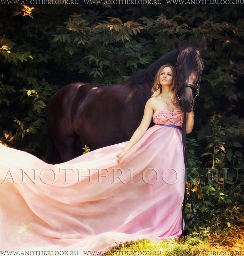 красивое фото лошади