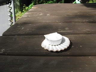 Seashell tealight holder