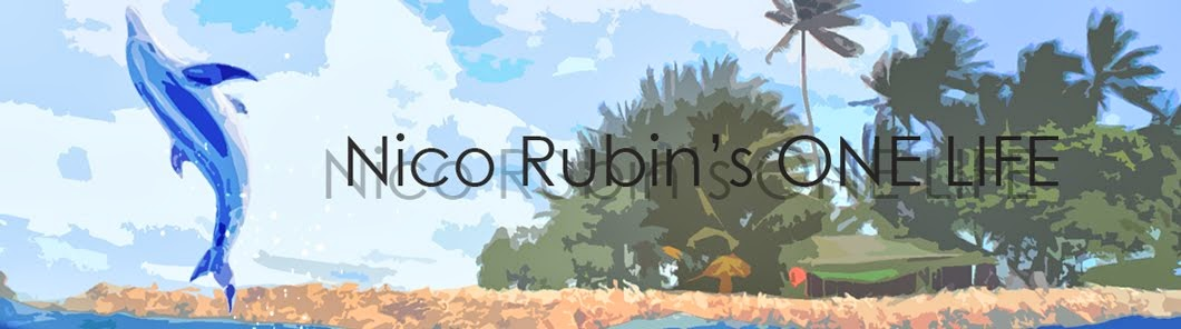 Nico Rubin's ONE LIFE