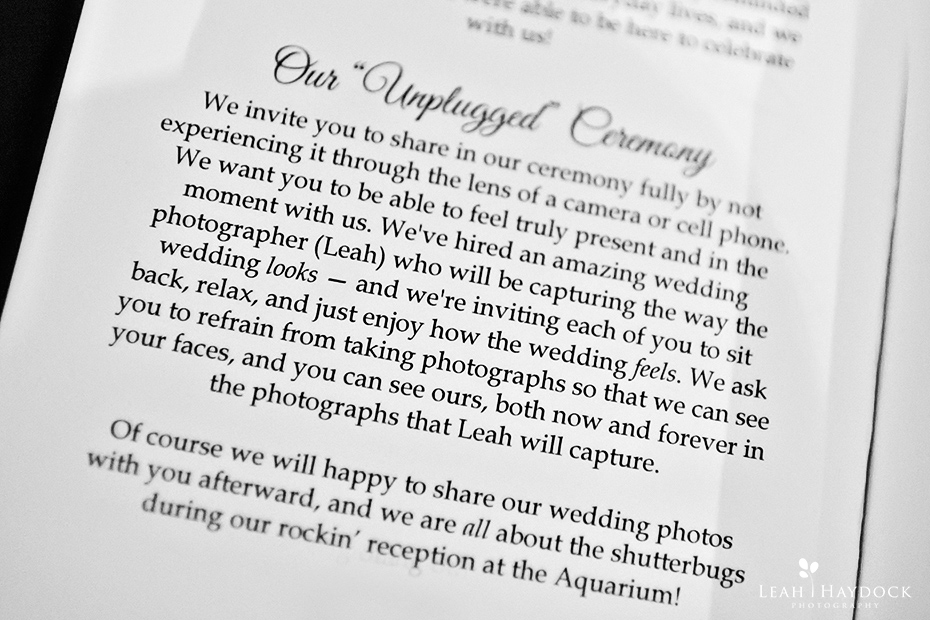 Suggested text for unplugged wedding ceremony