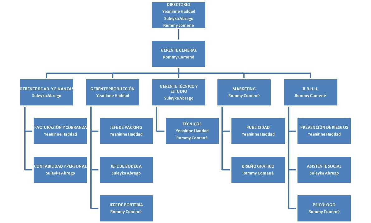 Importancia del organigrama en los negocios definici n for Estructura de una cocina industrial