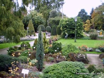 jardin botanico lovaina
