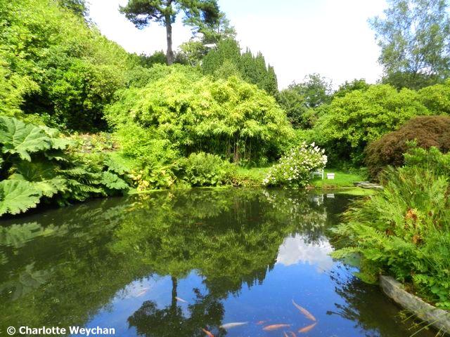 The galloping gardener in winston churchill 39 s footsteps for Garden pond kent