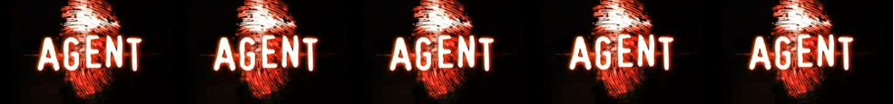 Agent (reality show)