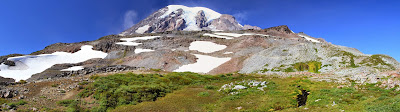 View Looking North, Meadow to Snowfield to Mount Rainier