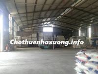 Chothuenhaxuong.info