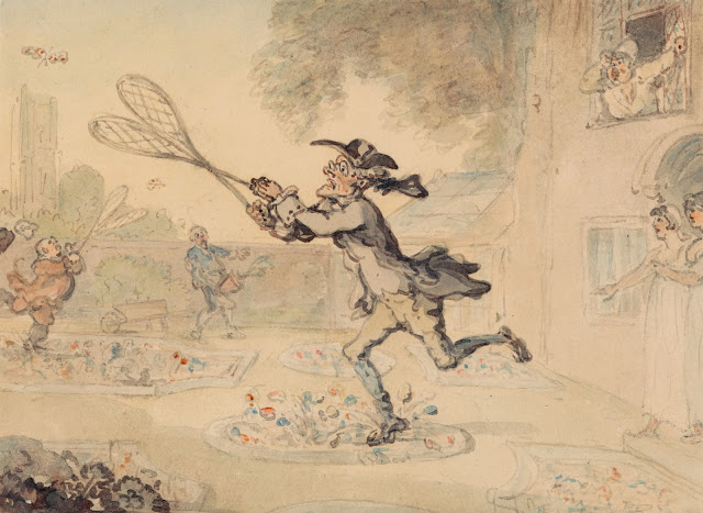 Butterfly Hunting by Thomas Rowlandson
