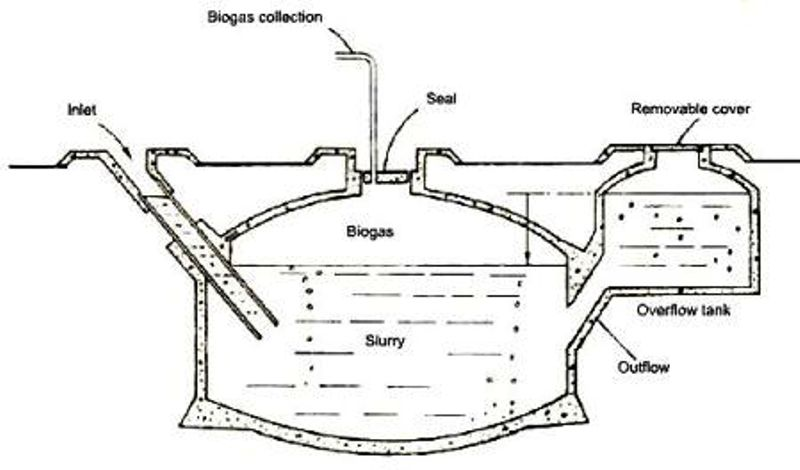 photographs of biogas plant