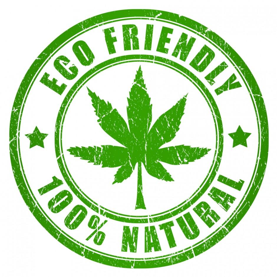 maconha medicinal nos Estados Unidos #ECOFRIENDLY   100% NATURAL