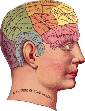 Modelo mental, por qué tu cerebro sabe hacer cosas que nunca ha hecho antes