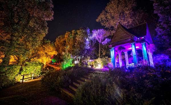 Spooky Halloween in Abbotsbury
