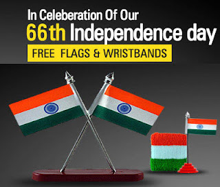 free-flag-wrist-band-independance-day
