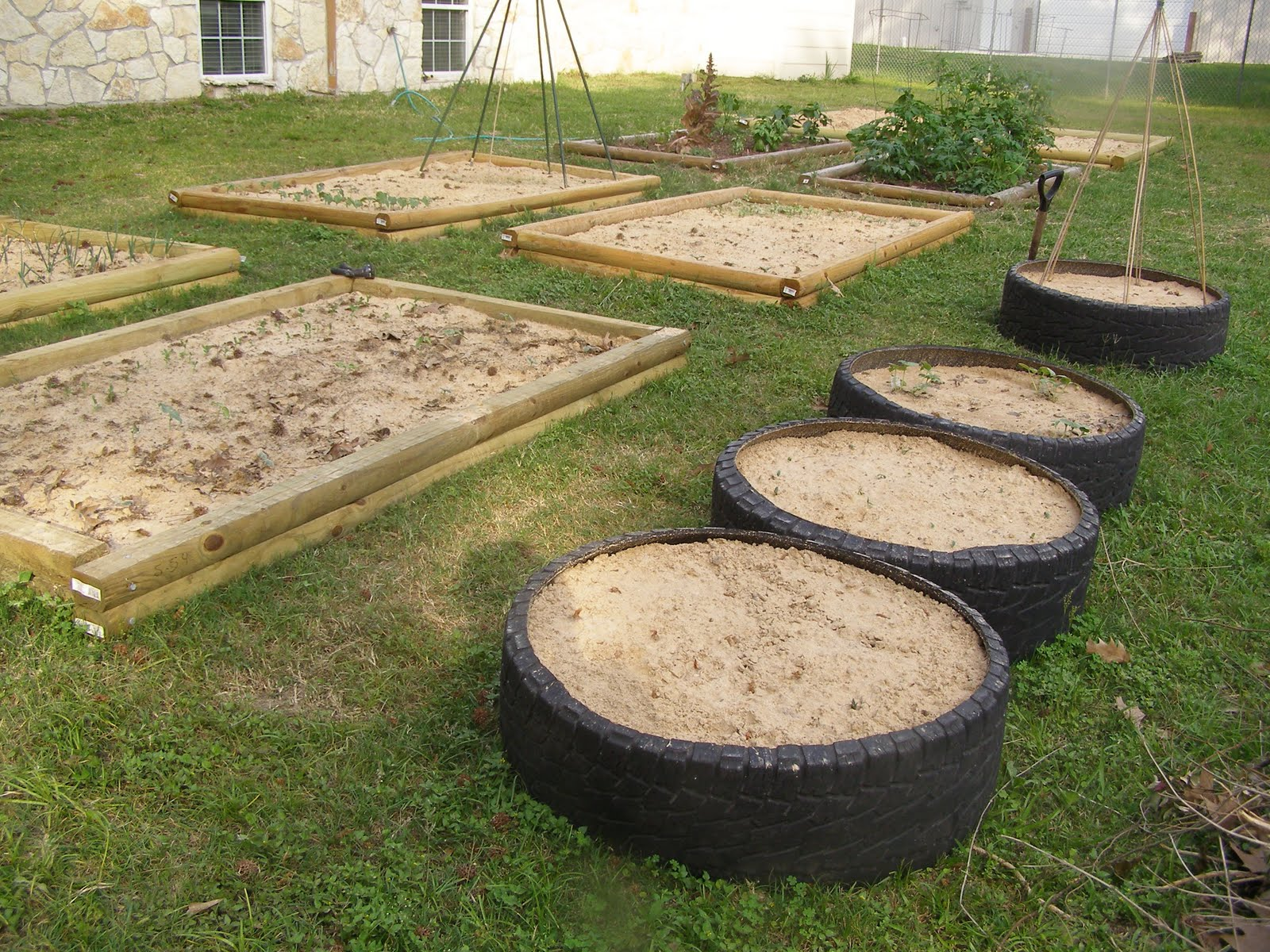 Frugal in texas frugal raised vegetable beds for Raised vegetable garden beds