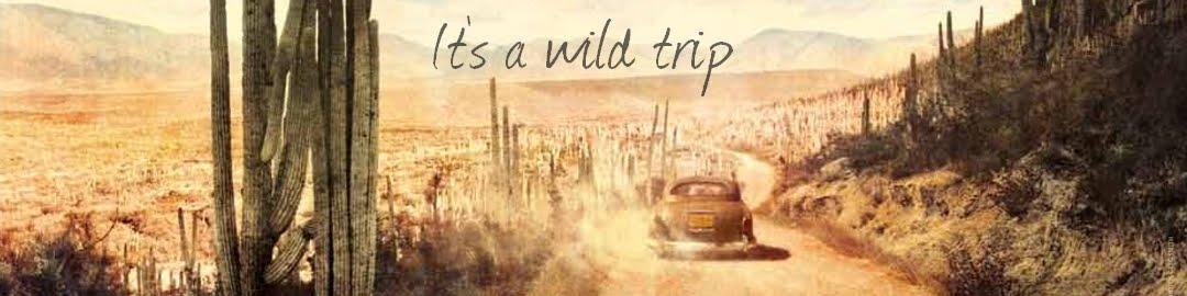It's just a wild trip