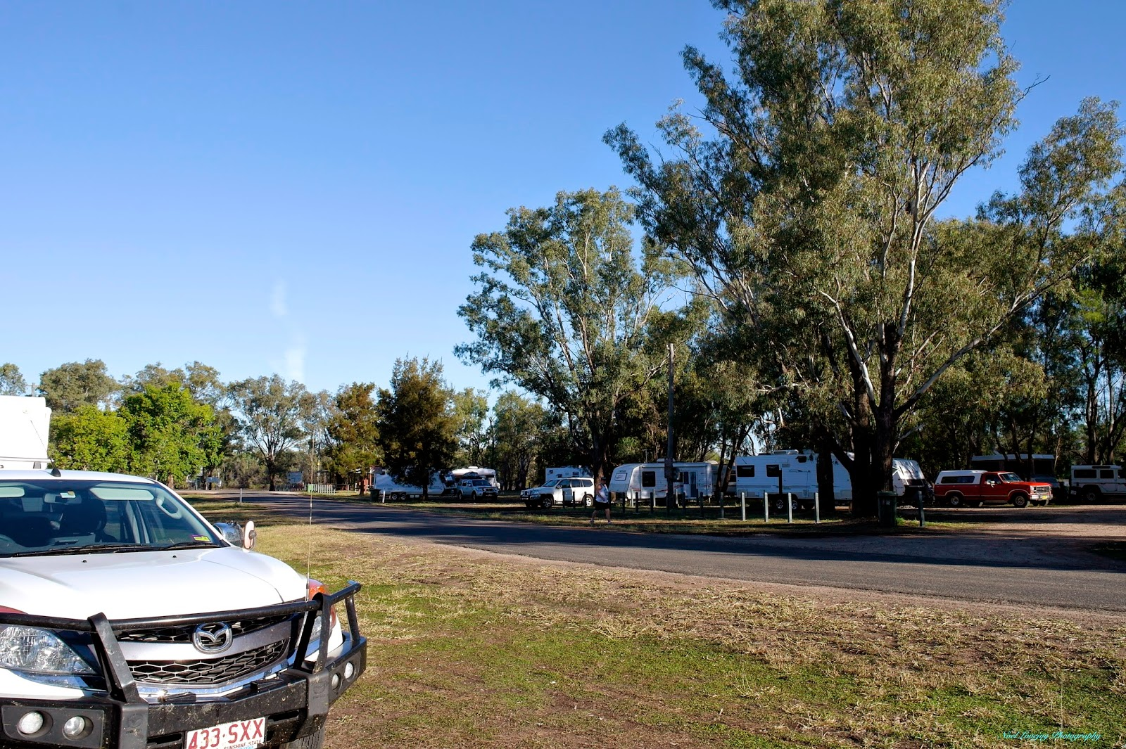 Chinchilla Australia  City pictures : Our camp at Chinchilla Weir. The caravans camped under the trees are ...