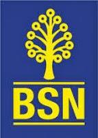 BSN - Bank Simpanan Nasional