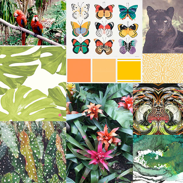 Tropics rainforest inspiration board