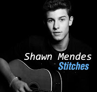 Shawn Mendes Stitches lyrics