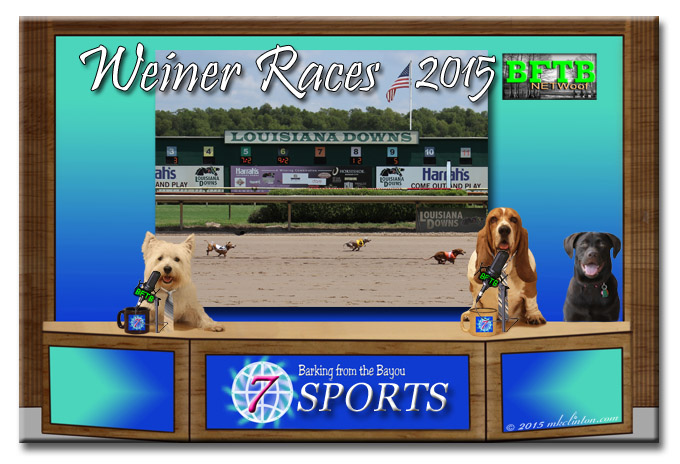 BFTB NETWoof sports desk with Weiner Dog Races report