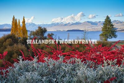 Lake Tekapo, New Zealand, Mackenzies Cafe Bar Grill,