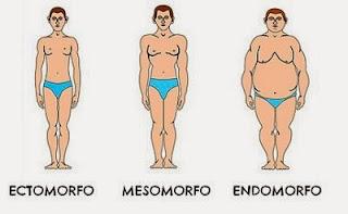 los mejores ejercicios para cada tipo de cuerpo