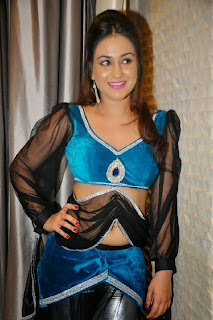 Actress Aksha  Pictures at CCCup (Crescent Cricket Cup Trophy) 2013 Launch  0016.jpg