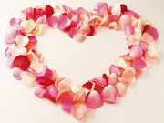 Foto de lindas flores de rosas rojas para el amor flores de rosas rojas para amor