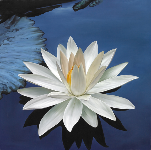Marsha a moore l is for the lotus flower its purity rising out the lotus rises through murky waters of ponds and lakes however when it blooms it floats upon the surface its petals fresh and lovely untainted by the mightylinksfo