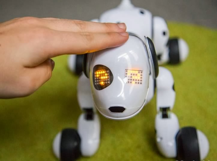 About Zoomer The Robotic Dog