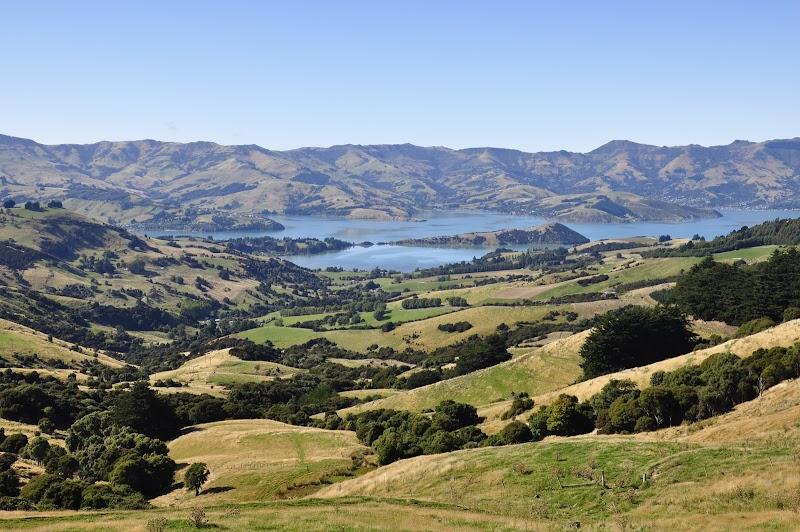 NZ Trip: Akaroa (Day 9)