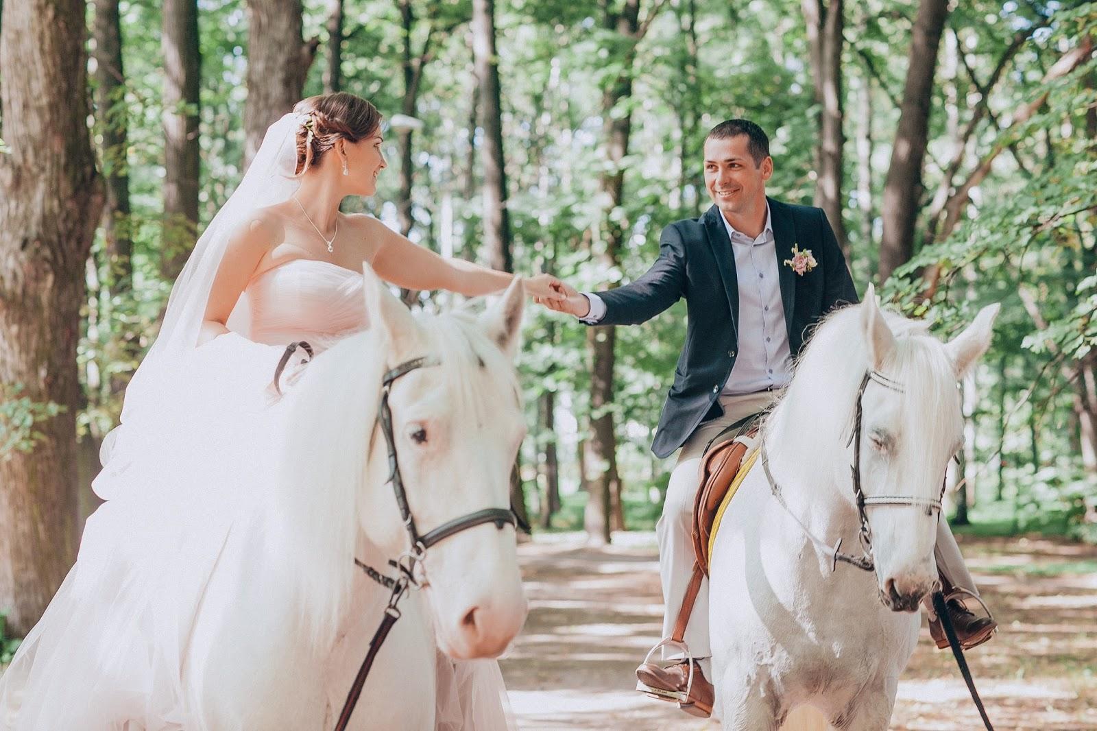 благородство белых коней