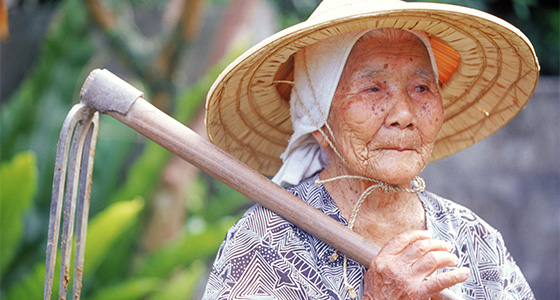 why people from japan okinawa live much longer