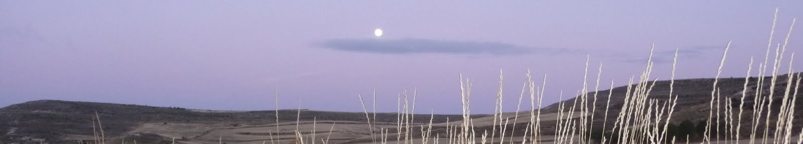 Moonset on the Meseta