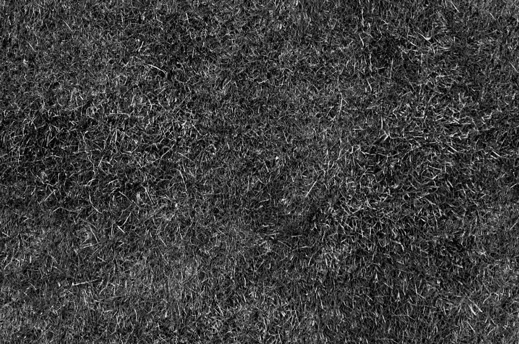 Posted by Vyteninho at 07:12: www.texturedownload.com/2011/11/3d-grass-texture-hd.html