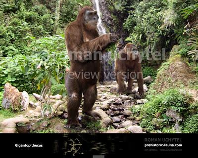 hominidos gigantes Gigantopithecus