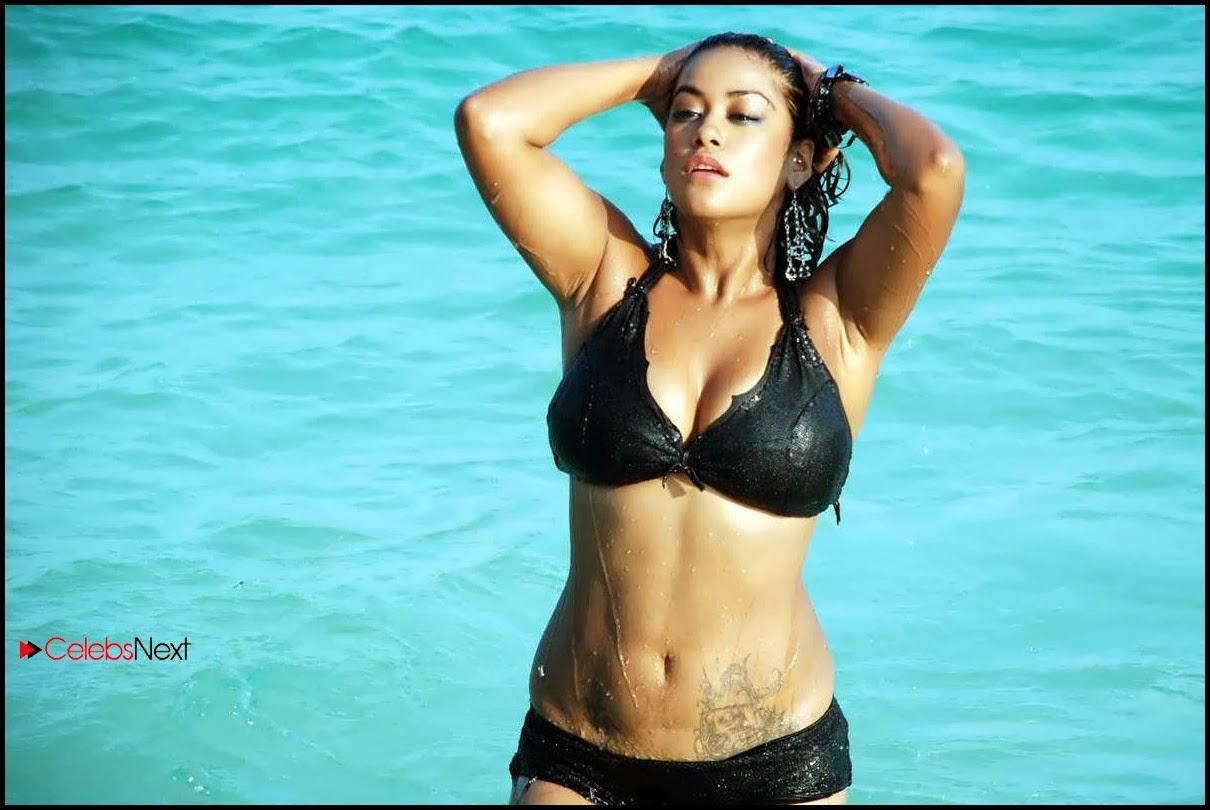 Gauhar Khan Bikini Pictures Archives -