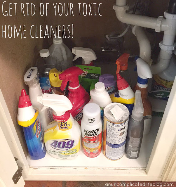 Chemical cleanser are bad for you, your family, your pets and the environment!